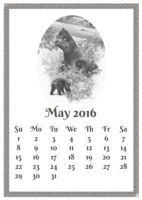 may-1333486_1280