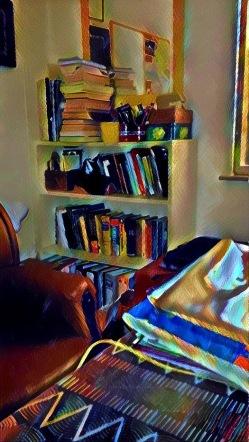 Nikki - pic2 - bookshelf