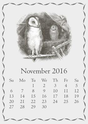 november-1735432_1280